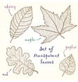 Collection of leaves cherry oak maple poplar vector image vector image