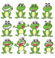 Different faces of a frog vector image vector image