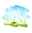 Fresh nature background with water drops and sky vector image vector image