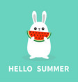 hello summer white bunny rabbit holding eating vector image