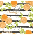 Oranges on gray stripes vector image