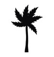 palm tree cartoon vector image