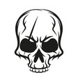 skull sketch vector image