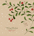 christmas card with mistletoe plant vector image