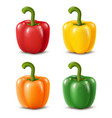 colorful paprika peppers isolated on white vector image