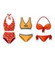 female colorful swimsuits isolated on white vector image vector image