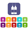 two bottles of wine icons set flat vector image vector image