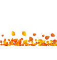 autumn leaves horizontal banner isolated on white vector image vector image