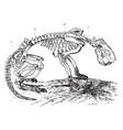 beaver skeleton vintage vector image vector image