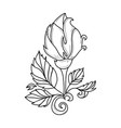 hand drawn sketch rose with leaves vector image vector image