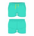 mens green sport shorts vector image