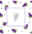 pueple grape banner on white background vector image