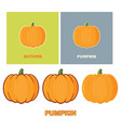 pumpkin vegetables cartoon collection vector image