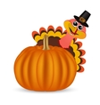 Turkey on Thanksgiving Day looks out from behind a vector image vector image