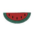 watermelon delicious fruit vector image