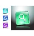 Glass Magnifier Icon Matte Button vector image