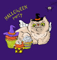 cartoon cute cat character in a witch s hat vector image vector image