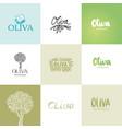 olive logo color templates set vector image