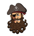 pirate face isolated on a white vector image