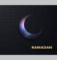 ramadan background night view starry vector image vector image