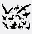 duck goose swan eagle bird silhouette vector image