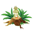 A turtle standing above the wood vector image vector image
