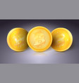 coins of currency bitcoin with glare and vector image vector image