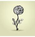 Hand drawn ink rose flower on grunge beige vector image