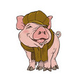 pig in winter clothes vector image vector image