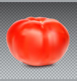 red whole tomato isolated on a transparent vector image vector image