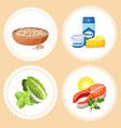 set healthy foods for young mother while vector image