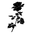 Flower rose silhouette vector image vector image