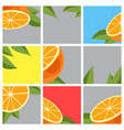 orange citrus fruit vector image vector image