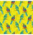 Seamless background parrots vector image vector image