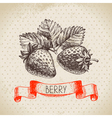 Strawberry Hand drawn sketch berry vintage vector image vector image