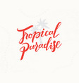 tropical paradise hand written lettering vector image vector image