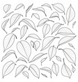 black and white leaves set vector image