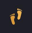 Footprint computer symbol vector image vector image