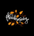 hand drawn thanksgiving typography poster celebra vector image vector image