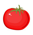 tomato isolated single simple cartoon vector image vector image