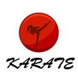 woman doing karate vector image