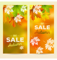 Autumn Sale 2 vertical banners vector image
