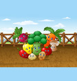 cartoon vegetable garden farm background vector image vector image