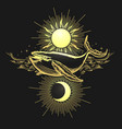 hand drawn sun and moon and whale on black vector image