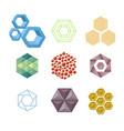 hexagon design geometric elements honeycombs vector image vector image