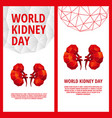 world kidney day flyer template vector image vector image