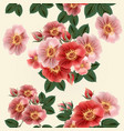 beautiful pattern with vintage styled rose flowers vector image vector image