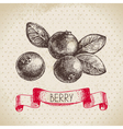 Cranberry Hand drawn sketch berry vintage vector image vector image