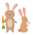 easter rabbit character bunny different pose vector image vector image