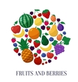Fruits and Berries Flat Style Icons Set in vector image vector image